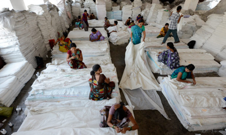 Gujarat Govt. supports development of garment industry