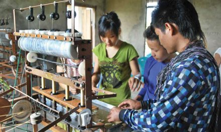 Silk sector in India's North-East high priority