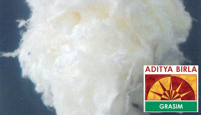 Grasim to concentrate on its viscose staple fibre business to register growth