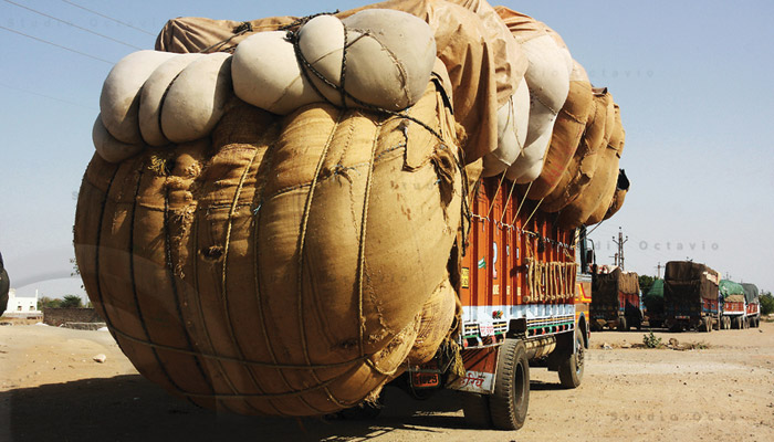 SIMA hails the cabbotage rule relaxation for cotton transport