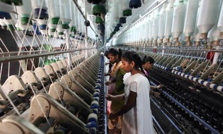 TEA appeals mills to save knitwear export sector