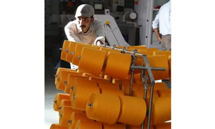 Govt. considering subsidies for Sutlej's textile unit