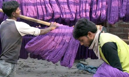 UP State Pollution Control Board seals six textile dyeing Units