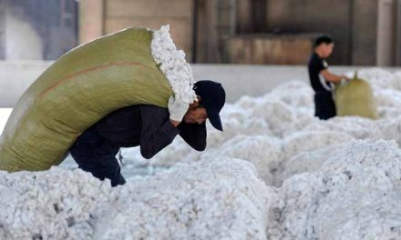 China Cotton Association to request waiver from import tariffs on US