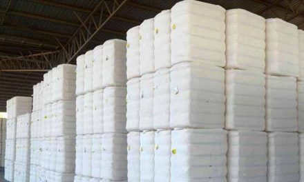 Cotton imports of India to rise to 22 lakh bales