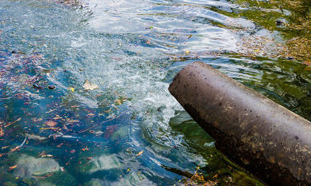 Textile delegation meets Rajasthan CM to discuss water pollution