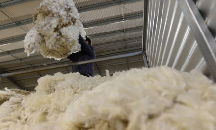 Australian wool exchange EMI lost 2 percent